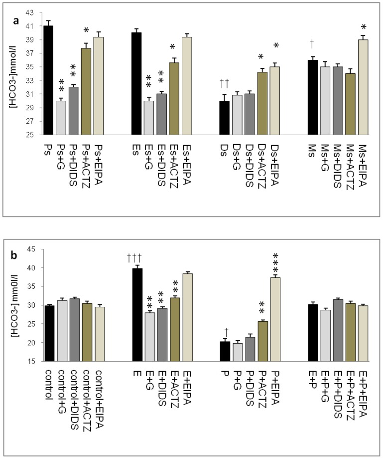 Uterine fluid HCO3- concentration with and without the presence of protein/enzyme inhibitors in (a) rats at different phases of the oestrous cycle and (b) ovariectomized rats receiving steroid replacement. Uterine fluid HCO 3 - concentration was increased under E influence. Glibenclamide, DIDS and ACTZ administration caused a decrease in HCO3- concentration at Es, Ps and following E treatment. HCO 3 - concentration was reduced under P influence. ACTZ and EIPA administration caused an increase in HCO3- concentration at Ds and following P treatment. E: 0.2 µg 17β-oestradiol, P: progesterone, E+P: 0.2 µg 17β-oestradiol + 4mg progesterone. Ps: proestrus, Es: estrus, Ms: metestrus, Ds: diestrus. G: glibenclamide, ACTZ: acetazolamide DIDS: 4,4'-diisothiocyanatostilbene-2,2'-disulfonic acid disodium salt hydrate and EIPA: 5-(N-Ethyl-N-isopropyl)-amiloride. † as compared to Es or control, * as compared to the group without inhibitor.(*, † :p