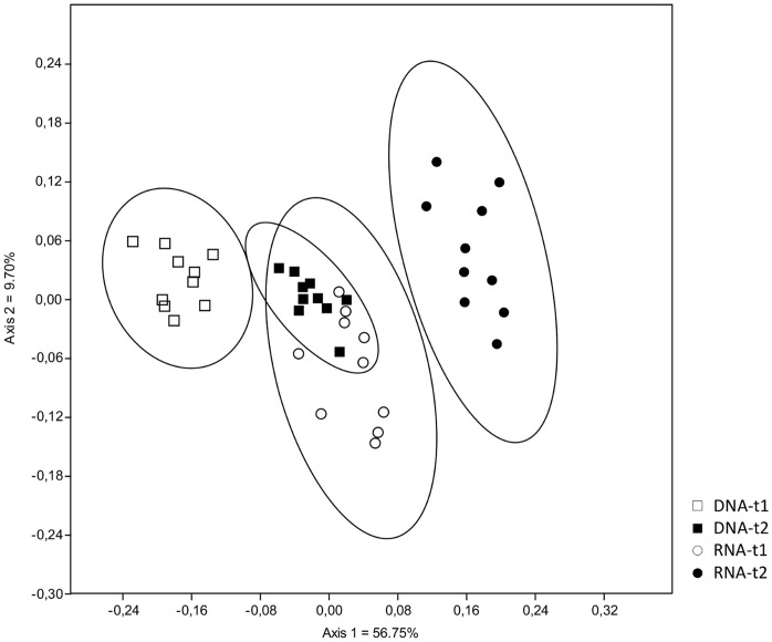 Non-metric multidimensional scaling (NMDS) analysis of presence and absence of fungal OTUs based on Jaccard-index of similarity with 95% confidence intervals shared between sampling times (t1 = 47 days; t2 = 104 days) and nucleic acid type (DNA, RNA).