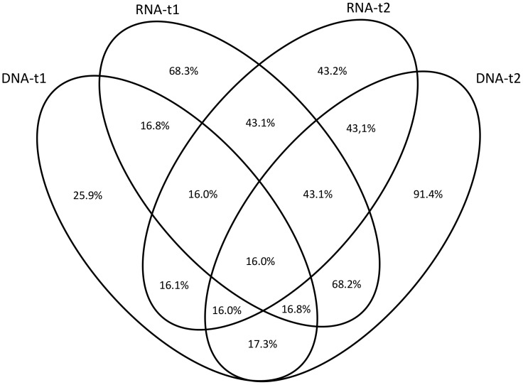 Percentage of fungal OTUs shared between nucleic acid type (DNA; RNA) in different sampling times (t1 = 47 days; t2 = 104 days).