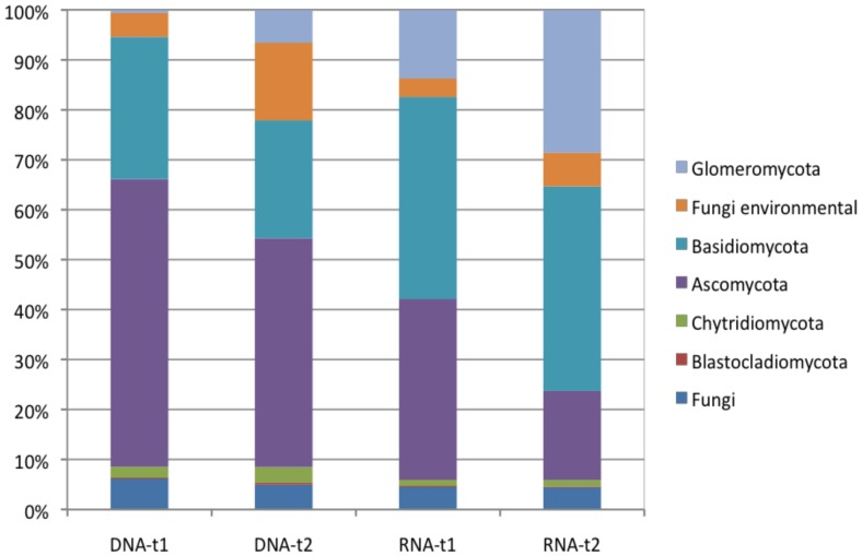 Relative abundance of different fungal phyla recovered from environmental DNA and RNA in soils with two maize cultivars (M = Monumental; D = DKC 3420) and their respective genetically modified lines (M-GM = event MON810; D-GM = DKC 3421YG) at two different sampling times (t1 = 47 days; t2 = 104 days) of plant age.