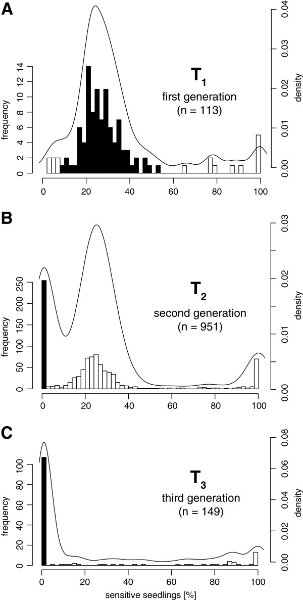 Segregation analysis of resistance marker loci in Nicotiana attenuata. Histogram of the sensitivity rates of 113 independently transformed N. attenuata lines due to segregation of the resistance marker gene monitored over three generations (T 1 –T 3 ), overlaid with smoothed density plots. Seedlings with a sensitivity rate between 10–50% were considered to descend from a hemizygous plant. More than 50% sensitivity was interpreted as gene silencing of the hygromycin B resistance marker and a sensitivity rate around 6.25% indicated two independent segregating loci. A , Sensitivity rates of T 1 seedlings collected from 113 independently transformed T 0 plant lines. Seedlings with the desired sensitivity rate between 10–50% were chosen for further inbreeding (indicated in black). B , Sensitivity rates of T 2 seedlings collected from 951 T 1 plants. The offspring of nine to ten plants were analyzed per plant line. Descendants from homozygous plants (0% sensitivity) were chosen for further inbreeding (indicated in black). C , Sensitivity rates of T 3 seedlings collected from 149 T 2 plants homozygous to the transgene. Any occurring sensitivity to the resistance marker was considered as gene silencing. Desired plant lines with sustained resistance were indicated in black.
