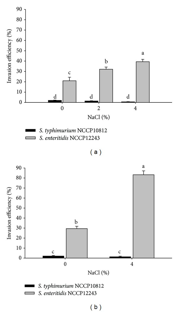 Invasion efficiency of S. typhimurium NCCP10812 and S. enteritidis NCCP12243 exposed to single concentrations (0, 2, and 4%) of NaCl (a) and sequentially increased NaCl concentrations up to 4% (b). a–d Means with different superscript letters are different ( P