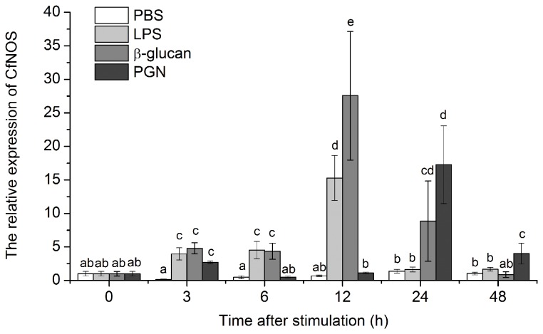 Temporal expression of CfNOS mRNA in scallop haemocytes after LPS, PGN, β-glucan and PBS challenge. The samples were collected after the treatments for 3, 6, 12, 24 and 48 h. Data was expressed as the ratio of the CfNOS mRNA to the β-actin mRNA. The scallops injected with PBS were used as the control group. The value was shown as mean ± SD (N = 6) and bars with different letters were significantly different ( P