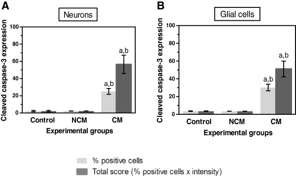 Quantification of cleaved caspase-3 expression in neurons (A) and glial cells (B) in the brain of the control, NCM, and CM groups. a Significance of p