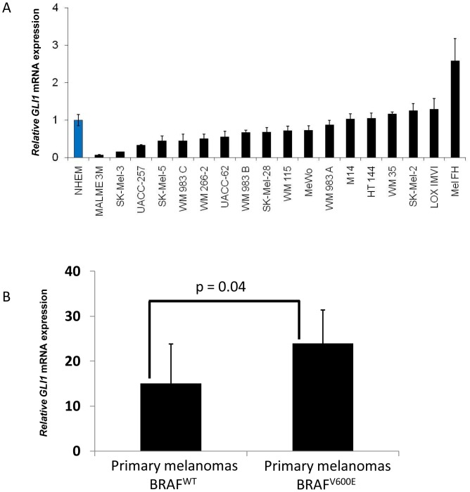 Evaluation of the GLI1 expression in human melanoma cell lines and human primary melanoma tissues. A ) Relative GLI1 <t>RNA</t> expression in human melanoma cell lines and normal human melanocytes as measured by quantitative <t>RT-PCR.</t> B ) GLI1 RNA expression in human primary melanoma tissues harboring wild type (n = 7) or V600E activating mutation in BRAF (n = 15) evaluated by Affymetrix gene profiling. P
