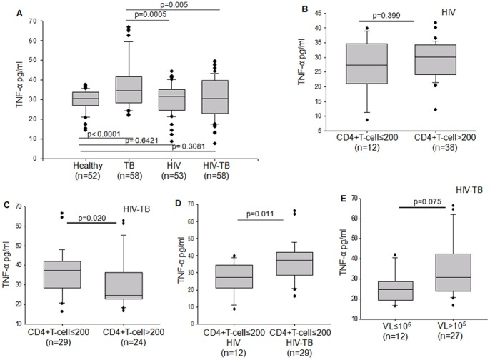 Plasma levels of TNF-α in relation to CD4+T cells and viral load. Box plots representing (A) comparison of plasma TNF-α levels between Healthy, TB, HIV and HIV-TB categories. (B) Plasma levels of TNF-α in HIV patients categorized on the basis of low CD4+T cells (≤200/mm 3 ) and high CD4+T cells ( > 200/mm 3 ). (C) Plasma levels of TNF-α in HIV-TB patients categorized on the basis of low CD4+T cells (≤200/mm 3 ) and high CD4+T cells ( > 200/mm 3 ). (D) Plasma levels of TNF-α in HIV and HIV-TB patients whose CD4+T cells are below ≤200/mm 3 of blood. (E) Plasma levels of TNF-α in HIV-TB patients with low viral load (VL≤10 5 IU/ml) and high viral load (VL > 10 5 IU/ml). The threshold for significance was set at p≤0.05. Bars above and below the plots represent the statistical significance (p value) between the groups.