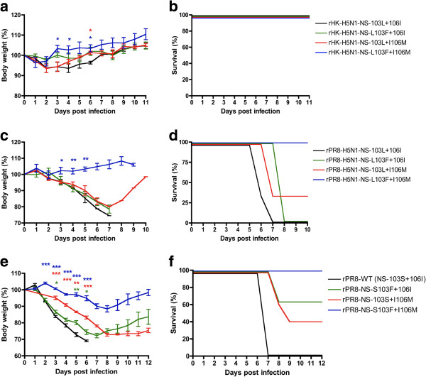 Virulence is increased by each of the 103L and 106I NS1 mutations in the H5N1- NS gene on human and mouse adapted virus backbones as well as for 103S and 106I PR8 NS1 gene mutations in PR8 virus. a and b . Groups of 3 CD-1 mice were infected intranasally with 5 × 10 6 pfu of rHK viruses possessing wt (103L + 106I) or mutant H5N1 NS1 genes that differed due to the indicated mutations at positions 103 and 106. c and d . Groups of 3 CD-1 mice were infected intranasally with 1 × 10 4 pfu with the different rPR8 viruses possessing wt (103L + 106I) or mutant H5N1 NS1 genes that differed due to the indicated mutations at positions 103 and 106. e and f , Groups of 5 BALB/c mice were infected intranasally with 1 × 10 4 pfu with wt rPR8 or mutants that differed due to the indicated mutations at positions 103 and 106. The percent of body weight loss was calculated as the mice body weight loss was recorded daily throughout the whole course of the experiment. Values are shown as average +/− standard deviation (*p