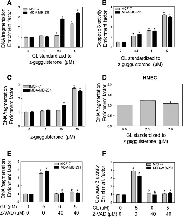 GL induced apoptosis in MCF-7 and MDA-MB-231 cells, but not in HMEC, determined by (A and D) quantitation of cytoplasmic histone associated DNA fragmentation, and (B) flow cytomitry analysis of Caspase 3 activity. Cells were treated with the indicated concentrations of GL or z-Gug (C) or DMSO (control) for 24 hours. Results are expressed as enrichment factor relative to cells treated with DMSO (control). Results are mean±SE ( n =3). *Significantly different ( P