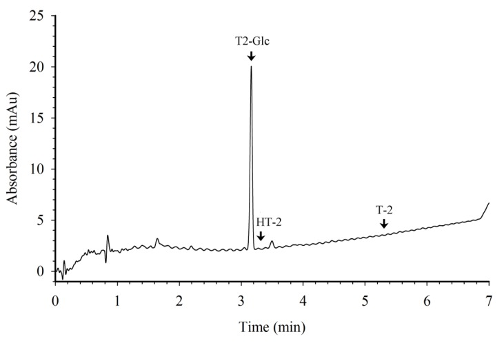 HPLC chromatogram of T2-Glc used to prepare the protein conjugates. The arrows indicate retention times for T2-Glc (3.17 min), HT-2 toxin (3.30 min), and T-2 toxin (5.35 min). The amount of T2-Glc injected was 250 ng.
