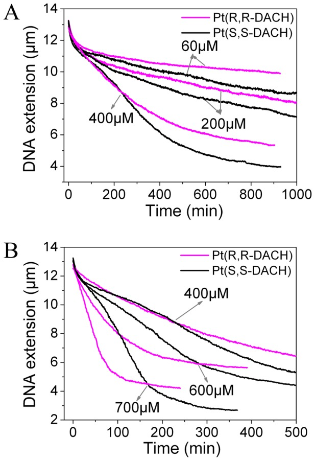DNA extension versus time of λ-DNA treated with Pt(R,R-DACH) or Pt(S,S-DACH). Each data curve was the average of at least three independent measurements.