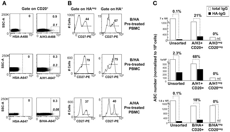 Identification of B lymphocytes specific for HA from A and B influenza strains in ex vivo PBMCs samples. PBMCs from different anonymous blood donors were pre-incubated with vaccine mono-bulk subunits from the B/Brisbane/60/2008 (B/HA pretreatment), or the H3N2 A/Panama/2007/1999 strain (A/HA pretreatment) and then stained HSA, rH3 (from A/Brisbane/10/2007), rH1 (from A/California/07/2009), or B/HA (from B/Brisbane/60/2008), as indicated. A. Staining pattern observed on CD20 + cells in PBMCs stained with the different rHA bait. The rectangular gates identify brilliant HA+ B-cells; the dotted vertical lines mark the gates used to sort HA + B-cells for the ELISPOT assays. B. Expression of the CD27 memory marker on HA + and HA neg B cells identified based on the sorting gates. C. H3 + (n = 15,234), H1 + (n = 6482) and B/HA + (n = 26,803) B-cells identified in A were sorted, mixed with autologous CD20 neg cells (in the ratio of 1∶20, 1∶100 and 1∶33) and activated with CpG and IL-2 for 5 days in vitro . Unsorted PBMCs and CD20 neg cells mixed with HA neg B cells were also cultured in the same manner, as controls. After 5 days cultured cells were harvested and assayed by ELISPOT for the number of cells secreting IgG and IgG specific for mono-bulk subunits from the vaccine strain homologous to the sorting bait. Results are expressed as numbers of antibody secreting cells (ASC) normalized to 10 6 cultured cells assayed by ELISPOT. Nd indicates undetectable ASC.