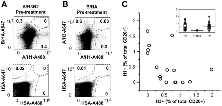 Simultaneous identification of B lymphocytes specific for HA from different influenza strains in ex vivo PBMCs samples. A. PBMCs from an anonymous blood donor were pre-incubated with subunits from either B/Brisbane/60/2008 or A/Panama/2007/1999 (H3N2), and then stained with anti-CD20 mAb, HSA conjugated with A488 and A647, with A647-rH3 (from A/Brisbane/10/2007) and A488-rH1 (from A/California/07/09), or with A647-rB/HA (from B/Brisbane/60/2008) and A488-rH1 (from A/California/07/09). The staining patterns observed in the CD20 + B-cell gate are shown. B. PBMCs from 16 anonymous blood donors were pre-saturated with B/Brisbane/60/2008 and then stained with anti-CD20 mAb, A647-rH3 (from A/Brisbane/10/2007) and A488-rH1 (from A/California/07/09). The scatter plot depicts paired values of H1 + (y-axis) and H3 + (x-axis) B-cells. The insert box plot depicts the distribution of H1 + , H3 + and H1 + H3 + B-cells in the same 16 donors. Mean values are indicated by dotted lines.