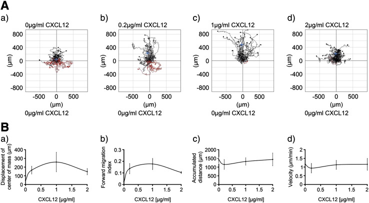 The CD133 + cell chemotactic response to increasing concentrations of CXCL12. Human UCB CD133 + cells cultured in StemSpan medium with SCF, Flt-3 ligand, IL-6 and TPO for 24 h were encapsulated in 1 mg/ml collagen I gel and seeded into the central chamber of the 3D chemotaxis μ-slides. 0 μg/ml, 0.2 μg/ml, 1 μg/ml or 2 μg/ml CXCL12 were added to create a chemokine gradient. The cells were imaged over 22 h by timelapse microscopy and analyzed using Image J manual tracking software and the chemotaxis and migration tool plug-in. (A) Representative trajectory plots after CD133 + cells were exposed to differing concentrations of CXCL12. The red and black lines indicate whether the cells finished their migration path below or above (towards differing CXCL12 concentrations) their starting point on the x axis. Rayleigh test p values were p = 0.16, p = 6.1 × 10 − 5 , p = 4.0 × 10 − 10 and p = 1.0 × 10 − 7 respectively for figures (a)–(d) indicating that the distribution of the cell end points was only significantly inhomogeneous (i.e. distributed towards the chemoattractant) in the presence of CXCL12 (b)–(d) and that this was most significant with 1 μg/ml (c). (B) shows the quantitative data for (a) displacement of center of mass (257.8 μm ± 112.9 for 1 μg/ml compared to no CXCL12 of 48.8 μm ± 8.9), (b) forward migration index (0.18 ± 0.05 for 1 μg/ml compared to no CXCL12 of 0.02 ± 0.00), (c) cell velocity and (d) accumulated distance as a function of CXCL12 concentration. Values are means ± SEM for n = 3 independent experiments.