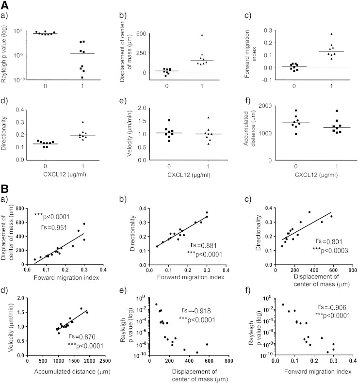CXCL12 induces human cord blood CD133 + hematopoietic stem/progenitor cell chemotaxis but not chemokinesis. Human UCB CD133 + cells were cultured in StemSpan medium with SCF, Flt-3 ligand, IL-6 and TPO for 24 h, encapsulated in 1 mg/ml collagen I gel and seeded into the central chamber of the 3D chemotaxis μ-slides, prior to adding 0 μg/ml or 1 μg/ml CXCL12 to form a chemokine gradient. (A) The results of 8 independent experiments are displayed as median values (horizontal bar) for individual experiments (scatter plots). Cell migration was tracked using Image J manual tracking software for 22 h and chemotactic and chemokinetic parameters quantified with the chemotaxis and migration tool plug-in for (a) the Rayleigh p value, (b) displacement of the center of mass (blue cross in Figs. 1 B and C), (c) forward migration index, (d) directionality, (e) velocity and (f) accumulated distance. Interestingly, there were significant differences in chemotaxis between the chambers containing medium alone and those containing CXCL12, with the following respective changes (mean ± SEM) in Rayleigh values (0.336 ± 0.073 vs. 0.001 ± 0.001; p = 0.0002), displacement of center of mass (10.82 ± 11.25 vs. 189.00 ± 44.26; p = 0.0002) and forward migration index (0.015 ± 0.008 vs. 0.126 ± 0.024; p = 0.0004) over 8 independent experiments, but no significant difference in cell velocity or accumulated distance without or with a CXCL12 gradient (p = 0.7128 and p = 0.2345 respectively). Statistics for chemotactic and chemokinetic data were calculated using the Mann–Whitney test with *p