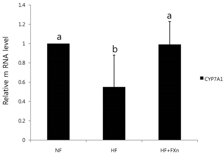 Effect of fucoxanthin on the mRNA expression of CYP7A1 in the liver of rats. Total RNA was isolated using TRI-reagenet and cDNA was synthesized using 3 µg of total RNA with SuperScript II reverse transcriptase. Realtime PCR was performed using SYBR green and standard procedures to assess the mRNA expression of primer in liver samples obtained from each group. An Applied Biosystem StepOne softwere v2.1 was used. Each bar represents the mean ± SD of three independent experiments. Different letters above each bar indicate significant differences among groups at α = 0.05 as determined by Duncan's multiple range test. CYP7A1, Cholesterol 7α-hydroxylase1.