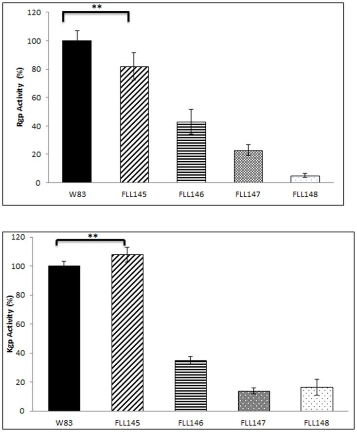 Proteolytic activity of P. gingivalis mutants. P. gingivalis strains were grown to late log phase OD 600 of 1.2 in 50 ml of BHI broth supplemented with hemin and vitamin K. Panel A ; whole cell culture was analyzed for Rgp (BAPNA) activity (**P≤0.01). Panel B ; whole cell culture was analyzed for Kgp (ALNA) activity. The results shown are representative of 3 independent experiments performed in triplicate (*P≤0.01).