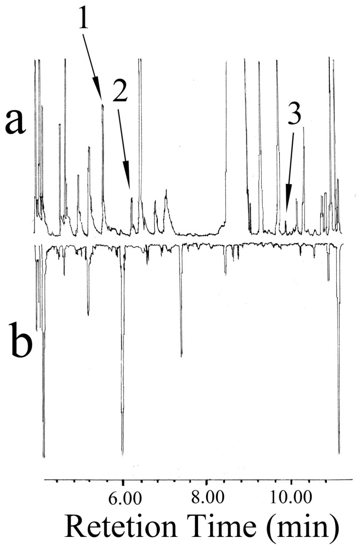 Reconstructed GC-MS total ion chromatograms of the volatile organic compounds (VOCs) from E. vermicola and the PSA medium: (a) VOCs collected from E. vermicola using the super Q absorbent and (b) VOCs collected from the PSA medium using the super Q absorbent. Identification of peaks: 1, α-pinene; 2, <t>β-pinene;</t> and 3, camphor.