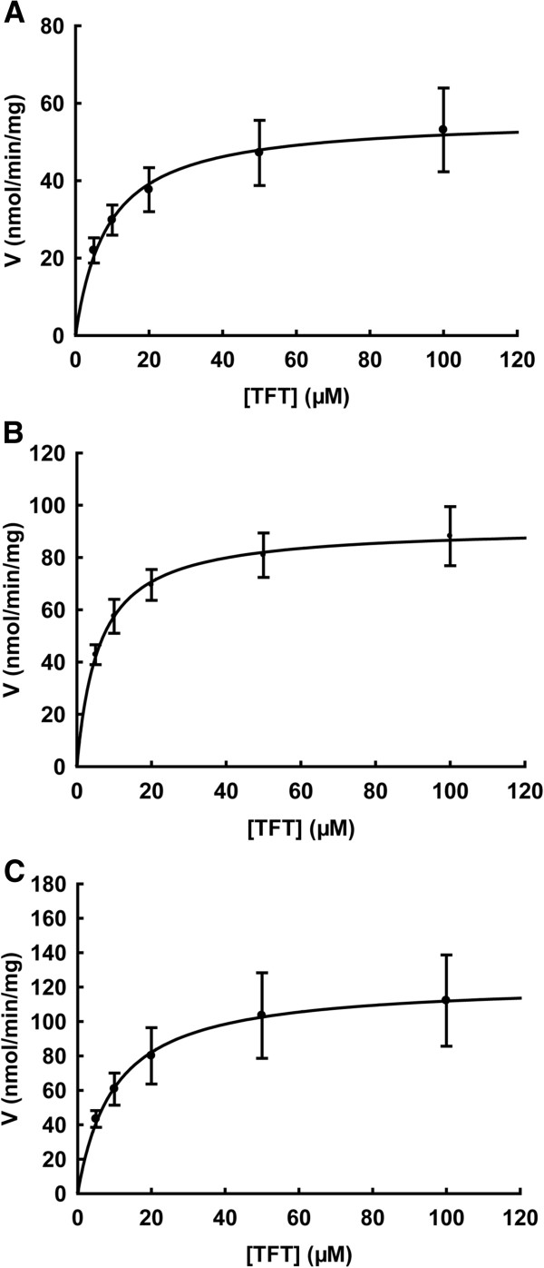 Substrate saturation curves of TFT with human TK2 (A), human TK1 (B), and Ureaplasma TK (C). Kinetic assays with TFT were performed by using [γ- 32 P]-ATP as the labelled substrate at fixed concentration and variable concentrations of TFT. The reaction products were separated by thin layer chromatography, and quantified as described in the experimental procedures. Data are from three independent measurements and are presented as mean ± SD.