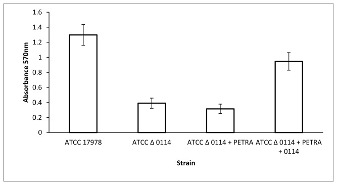 Quantification of <t>biofilm</t> formation by the wild-type strain (ATCC 17978), a stable knockout mutant strain lacking the gene A1S_0114 (ATCC Δ0114), the same mutant strain containing the pET-RA plasmid (ATCC Δ0114 + PETRA), and a mutant strain containing the pET-RA plasmid harboring the A1S_0114 gene (ATCC Δ0114 + PETRA + 0114).
