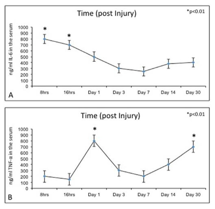 ( A ) ELISA: IL-6 levels, at time progression post injury, were quantified in experimental rats. Results are presented as the mean ± SEM. ANOVA and Bonferroni's test were used to evaluate the significance of the results: * p