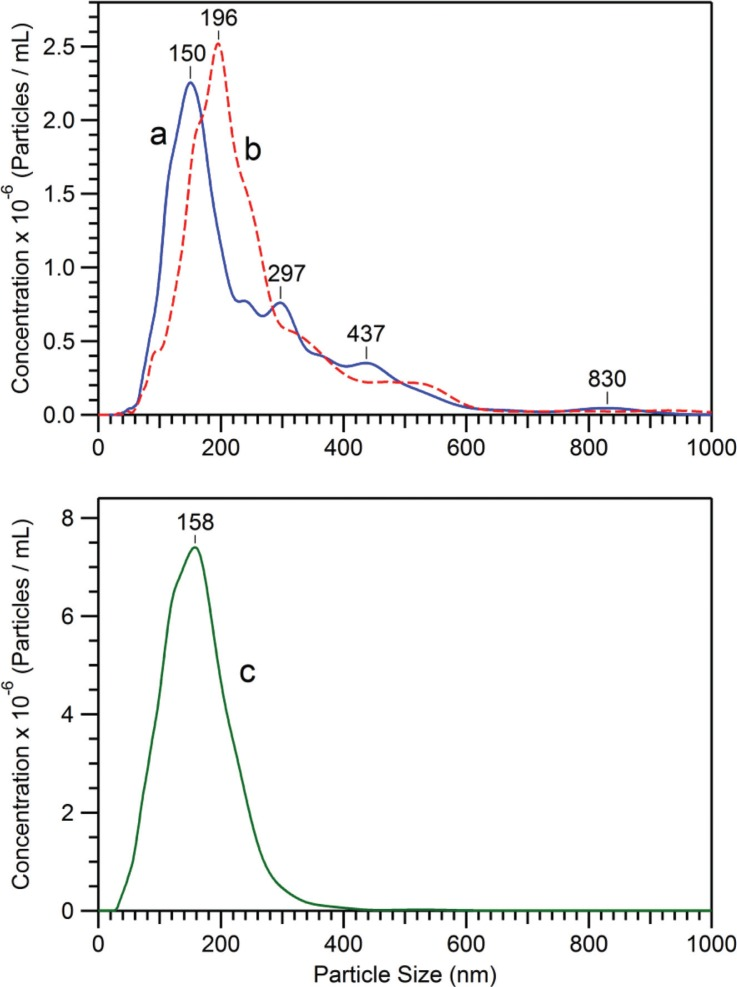 Size distribution and concentration of D. discoideum EVs samples ( Table I ), as measured by NTA. EVs were prepared from growth medium after 48 hours of cell growth, either with the usual conditions for the 12,000×g centrifugation (in Eppendorf tubes) (a), or with the 12,000×g centrifugation performed in 30 ml tubes (see Materials and methods ) (b). The curve (c) corresponds to EVs remaining in the 12,000×g supernatant, which relates to sample (b) EVs. The 12,000×g pellets (a and b) are concentrated in PBS by factors of 20 and 100, respectively, whereas the 12,000×g supernatant (c) is as obtained after centrifugation.