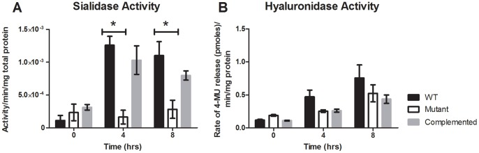 Sialidase and hyaluronidase production by the wild-type, mutant and complemented strains. Quantitative assays were carried out to determine the relative amount of extracellular enzyme production by the wild-type, mutant and complemented strains at time of inoculation and 4 h and 8 h post-inoculation (corresponding to exponential and stationary growth phases, respectively). Sialidase assays were performed using culture supernatants from cultures grown in <t>Todd-Hewitt</t> broth (A). Hyaluronidase activity was determined using the cell lysates from cultures grown in TPYG (B). All results are given as the average of three biological replicates (± SEM) for sialidase assays and six biological replicates for hyaluronidase assays; the asterisk (*) denotes a statistically significant difference ( p ≤0.05) as determined by the student's t-test.