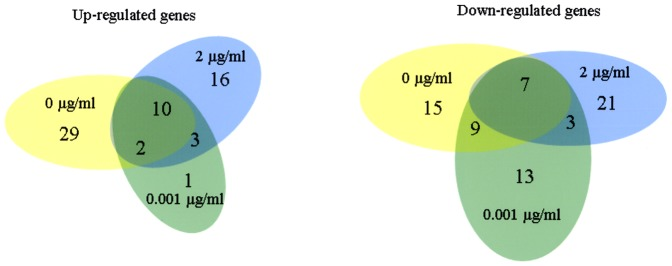 Venn diagram depicting numbers of genes up- or -down regulated in ATCC 33277 during growth in hemin- depleted, -limited and replete media. Gene expression was quantified by microarray and fold changes were calculated by dividing values for transconjugant TR719 by those for ATCC 33277 containing pTCOW empty vector. For up-regulated genes the cutoff was at least a two-fold increase and for down regulated a decrease of at least 0.62.
