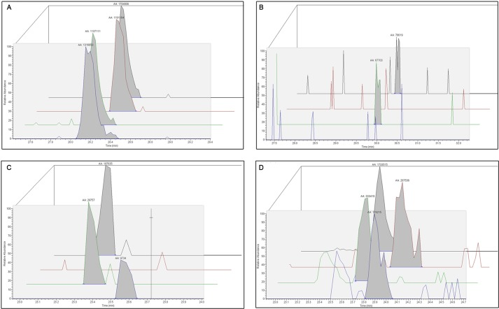 Illustrative examples of quantitative MS/MS data mined from limited proteolysis assay. All tryptic polypeptides, identified by a MASCOT search via Proteome Discoverer 1.3, were mapped against the linear amino acid sequence of Bpur for each time point and substrate group. Ion scores pertaining to individual polypeptide concentrations and the confidence of polypeptide identification through LTQ Velos Orbitrap mass coupled with a nano-LC Ultra/cHiPLC-nanoflex HPLC system are shown. Extracted ion chromatograms for polypeptides surrounding a given cleavage site were evaluated for signal intensity and peak area. Relative peak intensity (arbitrary units) is measured on the y axis, and peptide retention time (minutes) is measured on the x axis. Four representative data sets are presented. Black lines, no substrate added. Red lines, Bpur bound to dsDNA. Green lines, Bpur bound to ssDNA. Purple lines, Bpur bound to RNA. A, representative data set showing results when binding of a ligand did not change a rate of digestion, relative to the Bpur alone control reactions: TYFFNVK polypeptide presence after 20 min of incubation with trypsin. B, levels of the GDYFLNIVESK polypeptide after 10 min of incubation with trypsin. Binding of RNA or dsDNA inhibited cleavage adjacent to residue Lys-40. C, levels of the QKVSTGSVGSSAR polypeptide after 20 min of incubation with trypsin. To different extents, binding of each ligand inhibited cleavage at residue Lys-74. D, levels of the RSPSGDFERAIAVIK polypeptide after 20 min of incubation with trypsin. To different extents, each nucleic acid ligand decreased cleavage adjacent to residue Lys-40, resulting in the increased production of a larger polypeptide fragment.