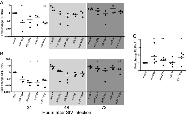 Four miRNAs reduce levels of full length and multiply spliced viral RNAs. Primary macaque macrophages were transfected with 100 nM of either miRNA mimics or antagonists, then infected with SIV (MOI 0.05) 24 hours after transfection. Cell lysates were collected at 24, 48 and 72 hours post-infection for miRNA experiments and 48 hours for miRNA antagonist experiments. Levels of full length (A, C) and spliced (B) RNA was measured by RT-qPCR. Values are expressed as fold change over SIV-only controls. Results are reported as percent of SIV-only control using the ΔΔCq method.
