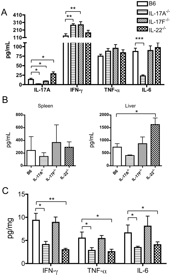 Inflammatory cytokine production in mice immunized with 2OA-BSA. (A) Serum levels of IL-17A, IFN-γ, TNF-α and IL-6 in WT, IL-17A −/− , IL-17F −/− and IL-22 −/− mice, respectively, at 2 weeks following 2OA-BSA immunization. (B) Production of IFN-γ in supernatant fluids of cultured splenic and hepatic MNCs (n = 4) with anti-CD3/CD28 mAbs at 3 days. (C) The level of inflammatory cytokines in extracted liver protein from WT, IL-17A −/− , IL-17F −/− and IL-22 −/− mice, respectively. Each group n = 8. *p