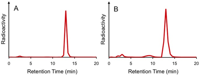 RP-HPLC profiles of [ 125 I]8 in mouse plasma before (A) and after incubation for 1 h (B) at 37°C.