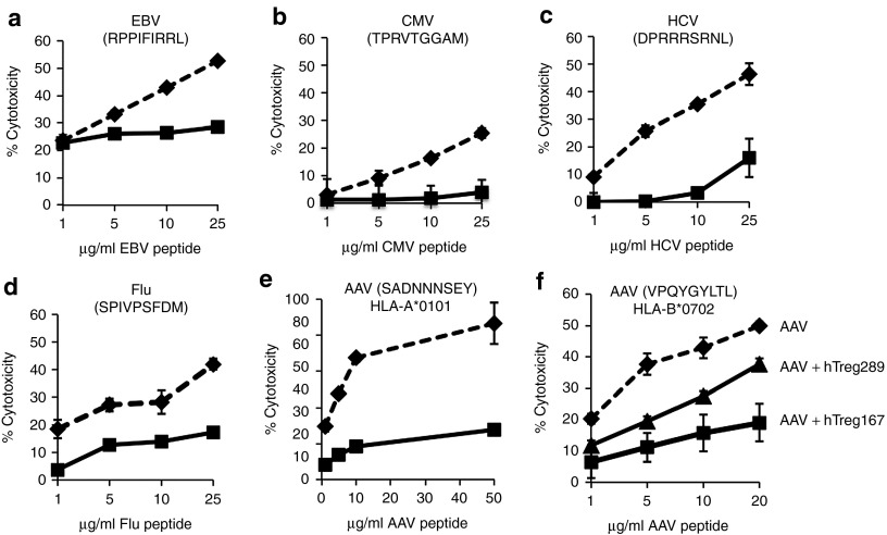 Tregitopes can modulate CTL responses directed against several antigens and in the context of different HLA alleles . ( a–d ) Teff specific for Epstein-Barr virus (EBV), cytomegalovirus (CMV), hepatitis C virus (HCV), or influenza virus (Flu) were obtained following the protocol outlined in Figure S1. All MHC I epitopes were HLA-B*0702-restricted. Teff were used in the CTL assay at a Teff:target ratio of 1:10. Targets were peptide loaded with increasing concentrations of the relevant peptide. Results are expressed as % cytotoxicity compared to a max cytotoxicity (cells treated with 10% SDS) after background subtraction. Dashed line, Teff expanded from PBMC restimulated in vitro with indicated viral peptide only; Black line, Teff expanded in vitro with indicated viral peptide and hTreg167. ( e ) CTL assay in which Tregitope efficacy was tested against the AAV HLA-A*0101 restricted MHC I epitope SADNNNSEY. HLA-matched Teff were used in the CTL assay at a Teff:target ratio of 1:10. Targets were peptide loaded with increasing concentrations of the relevant peptide. Results are expressed as % cytotoxicity compared to a max cytotoxicity (cells treated with 10% SDS) after background subtraction. Dashed line, effectors obtained by restimulating PBMC in vitro with the SADNNNSEY epitope only; Black line, restimulation of PBMC was performed with the SADNNNSEY epitope from AAV and hTreg167. ( f ) CTL assay in which targets were loaded with the HLA-B*0702 epitope VPQYGYLTL from AAV. Teff were either obtained restimulating PBMC with the same AAV peptide only (AAV), or with the AAV peptide and Tregitope 167 (AAV+hTreg167), or with the AAV peptide and Tregitope 289 (AAV+hTreg289). Teff were used in the CTL assay at a Teff:target ratio of 1:10. Targets were peptide loaded with increasing concentrations of the relevant peptide. Results are expressed as % cytotoxicity compared to a max cytotoxicity (cells treated with 10% SDS) after background subtraction. Experiments shown were repeated at least twice. Error bars represent SEM.