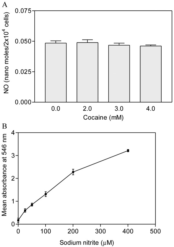 (A) Nitric oxide production in cocaine-treated astroglial cells. The cells were seeded in 96-well plates with complete RPMI-1640 media lacking phenol red, containing 10% FBS and treated with 2, 3 and 4 mM cocaine for 1 h. Nitric oxide (NO) was detected with Griess reagent. Data are presented as means ± SEM (n=12, * P > 0.05, insignificant in comparison to the control). (B) Standard curve of sodium nitrite (25–400 μM).