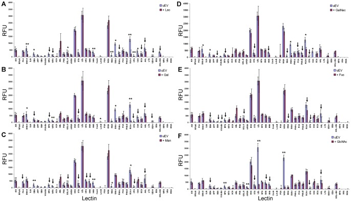 Competitive inhibition of uEV interactions with lectin microarray using six different sugars. Data normalized to the response of LEL to show the relative inhibition through competition with 50( A ) Lac, ( B ) Gal, ( C ) Man, ( D ) GalNAc, and ( E ) and Fuc ( F ). To evaluate 50 mM GlcNAc inhibition ( F ), data was normalized to the response of RCA-I. Mean data is representative of inhibition for a single biological sample experiment conducted with 3 technical replicates. Error bars represent ± average deviation. Significance (** = p ≤0.01, * = p ≤0.05) determined by two-tailed, two-sampled unequal variance Student's t-test. Arrows mark reductions in intensity greater than 20% with p > 0.05.