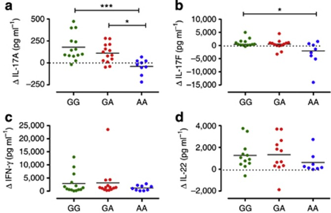 IL-23R A/Glu381 allele promotes IL-23 unresponsiveness in human memory Th17 cells. Supernatants of memory CD4+ T cells from healthy individuals homozygous for the common G allele (GG, green dots), heterozygous GA (red dots), or homozygous for the protective A allele (AA, blue dots), cultured with or without IL-23 for 72 hours, were assayed for IL-17A ( a ), IL-17F ( b ), IFN-γ ( c ), and IL-22 ( d ) secretion. Data are shown as differential cytokine production (Δ) in cells cultured with versus without IL-23. Each symbol represents one individual donor. Dotted line denotes Δ=0. Horizontal bars represent means ( a ) or medians ( b , c , d ). One-way analysis of variance, followed by Bonferroni post test ( a ) or Kruskal–Wallis test and Dunn's multiple-comparison test ( b , c , d ), was performed. * P
