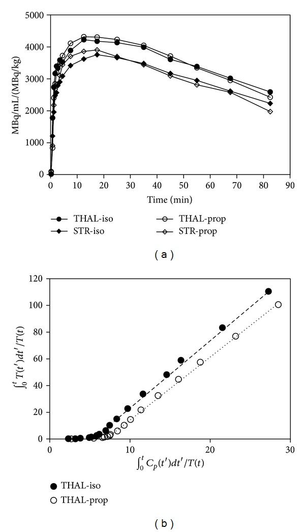 Time activity curves (TACs) and Logan plots for yohimbine. (a) Averaged yohimbine TACs for a region of high binding (thalamus) and a region of lower binding (striatum) in pigs (data corrected for amount of injected activity per kg body weight) for comparison of isoflurane and propofol anesthesia. (b) Logan plots of yohimbine thalamus data for 2 representative pigs, one anesthetized with isoflurane (filled circles), and one anesthetized with propofol (open circles). Note the straightness of the fitted line.