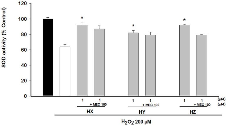 Modulation of the SOD activity in NGF-PC12 differenciated cells by HX, HY and HZ. Huprines were added alone or concomitantly with MEC (100 µM) to the culture 48 h prior to H 2 O 2 addition. Then, cells were incubated with 200 µM H 2 O 2 for 2 h. SOD activity was measured using a SOD activity assay from Fluka. At least three independent experiments were carried out in triplicate. The data are means ± s.e.m. expressed as percentage of control value. *p