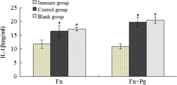 Levels of IL-1β in oral mucosal tissues of mice. After 3 days of injection, the mandibular and tongue mucosal tissues of the mice were collected, and 100 mg/ml PBS buffer was added. After homogenisation, the supernatant was collected by centrifugation at 20,000× g at 4 °C for 20 min. The IL-1β levels in the serum and oral mucosal tissues were determined using ELISA kits (Thermo Scientific, USA). The IL-1β levels in the experimental group of mice were lower than in the control group following injections with both F. nucleatum alone and with F. nucleatum plus P. gingivalis (*, # p