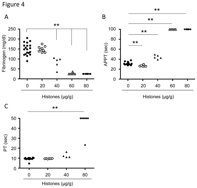 Extracellular histones cause consumptive coagulopathy. Plasma fibrinogen (A), APTT (B), and PT (C) of mice 10 minutes after injection with vehicle or histones (20-80 µg/g, n = 4-10). ** P