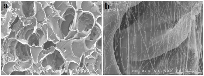 Scanning electron micrographs of: a) porous structure of freeze-died SF/SWNT conduits, b) Aligned fibronectin nanofibers produced through electrospining process.