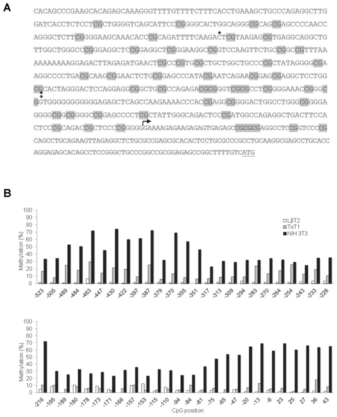 The murine Foxl2 promoter is differentially methylated in homologous and heterologous cells. A) DNA sequence (-600 to +165) of the murine Foxl2 promoter. Of 62 CpG dinucleotides pictured, 51 were analyzed by pyrosequencing (shaded in grey). The transcriptional start site (+1) mapped here by 5' RACE is indicated with an arrow. The ATG translation initiation codon is underlined. The first nucleotides of the -432 and -187 reporters are marked above the sequence with * and **, respectively. B) Percent methylation of the CpGs at the indicated positions in genomic DNA from LβT2 (white bars), TαT1 (grey bars), and NIH3T3 (black bars) cell lines as assessed by pyrosequencing.