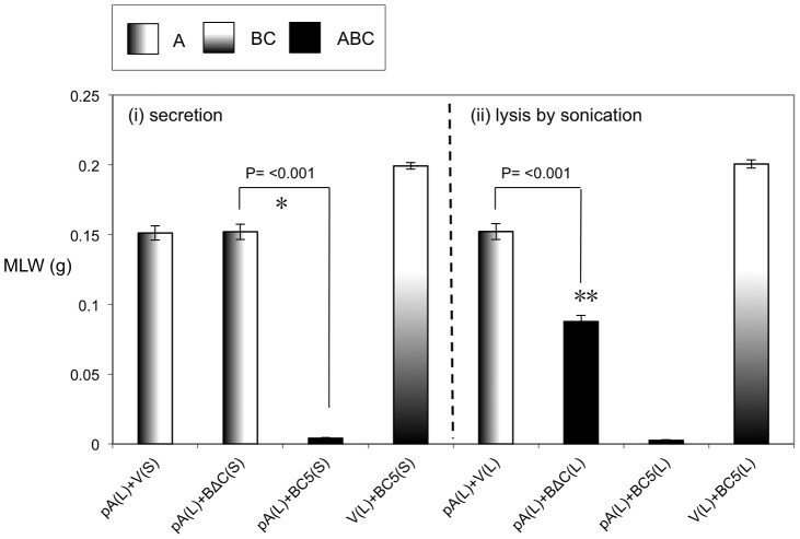"""The N-terminal 361 amino acids of TcdB1 are not essential for toxicity. Mean larval weight (MLW) gain of cohorts of M. sexta neonates (n = 10) fed 100 µl of mixtures of sonicated cell extracts (L) and culture supernatants (S). Arabinose inducible expression constructs tested include the pBAD30 vector only, """"V"""", the tcdA1 only construct, """"pA"""" ( figure 4 ) and the BC5 and BΔC constructs ( figure 6 ). Sample mixes were as either (i) 50 µl lysed pA sample complemented with 950 µl induced supernatant (left panel) or (ii) 50 µl lysed pA sample complemented with 50 µl lysed test sample and diluted with 900 µl of PBS. Error bars represent the standard error. The more potent the toxic effect, the smaller the mean larval weight. A key using the data column fill pattern is given above the graph to assist in the interpretation of the predicted TC subunit contents of the test samples. The indicators * and ** are discussed in text. Two sample t -test comparisons were used to confirm statistical significance in mean weight differences at 99% confidence between the following samples discussed in the text; [pA(L)+BΔC(S)] vs. [pA(L)+BC5(S)]: t = 26.68, P"""