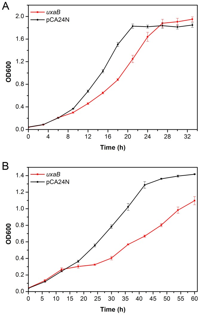 Cell growth of E. coli DH5α overexpressing uxaB in M9 medium, with E. coli DH5α harbouring pCA24N as control. ( A ) 0 g/L sodium acetate ( B ) 5 g/L sodium acetate. Average values and standard deviations were calculated from triplicate experiments.