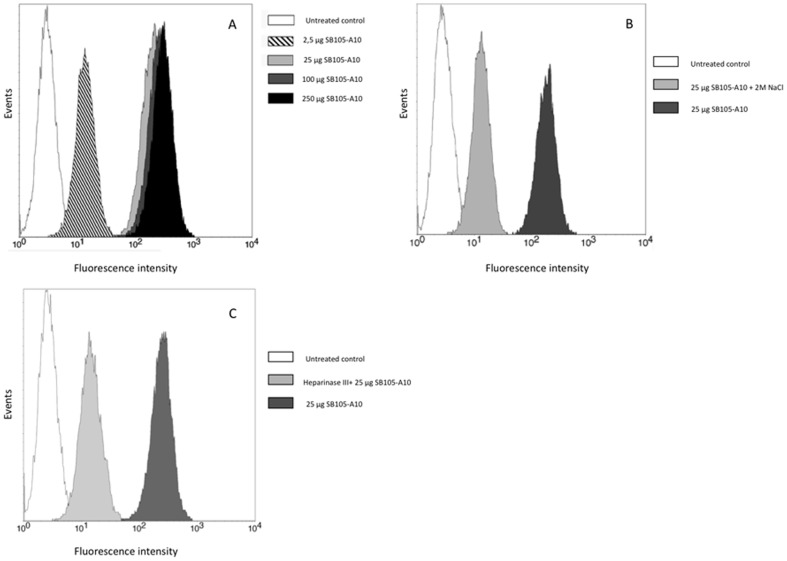 Flow cytometry analysis of binding between SB105-A10 and heparan sulphates. Typical experiments were shown. ( A ), Different concentrations of FITC-conjugated SB105-A10 (from 0 to 250 µg/ml) were assayed for 1 hour at 4°C on activated PBMCs (5×10 6 /ml). The saturation was achieved at 25 µg/ml. ( B ), Activated PBMCs (5×10 6 /ml) were treated with 25 µg/ml of FITC-conjugated SB105-A10 for 1 hour at 4°C and then washed with PBS containing 2 M NaCl, a treatment known to remove cationic polypeptides from cell surface HSPGs. ( C ), Activated PBMCs (5×10 6 /ml) were incubated with heparinase III for 2 h at 37°C or left untreated before the binding assay with 25 µg/ml of FITC-conjugated SB105-A10. Both heparinase III and 2 M NaCl treatments reduce but not abolish the specific fluorescence signal suggesting an interaction between SB105-A10 and cell membrane that is not related to HSPGs.