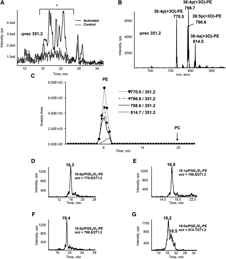 Identification of esterified PGs in human platelets and analysis of PGE 2 /D 2 -PE using <t>LC/MS/MS</t> . A: Precursor scanning demonstrates lipids with m/z 351.2 eluting during LC/MS/MS. Total lipid extracts from washed human platelets activated with 0.2 U/ml of thrombin for 30 min at 37°C were separated on the Q-Trap platform using LC/MS/MS as described in Materials and Methods, with online negative precursor scanning for m/z 351.2. *, region of LC trace where ions appear that are elevated by thrombin stimulation. Control, broken line. B: Identification of ions that generate m/z 351.2 daughter ions. Shown is a negative MS scan of region marked * in A. Scan shows ions eluting between 19 and 24 min. C: Characterizing phospholipid headgroups of esterified PL. Lipid extracts from thrombin-activated platelets were separated on <t>normal-phase</t> HPLC, as described in Materials and Methods, with fractions collected at 30 sec intervals. Twenty microliters of each fraction was analyzed specific parent → m/z 351.2 MRM transitions. PL class elution was determined using commercial phospholipid standards. Panels D–G: LC/MS/MS of PGE 2 /D 2 -PEs. Platelet lipid extracts were separated using LC/MS/MS as described in Materials and Methods and detected on the Q-Trap platform by parent → m/z 271.2.