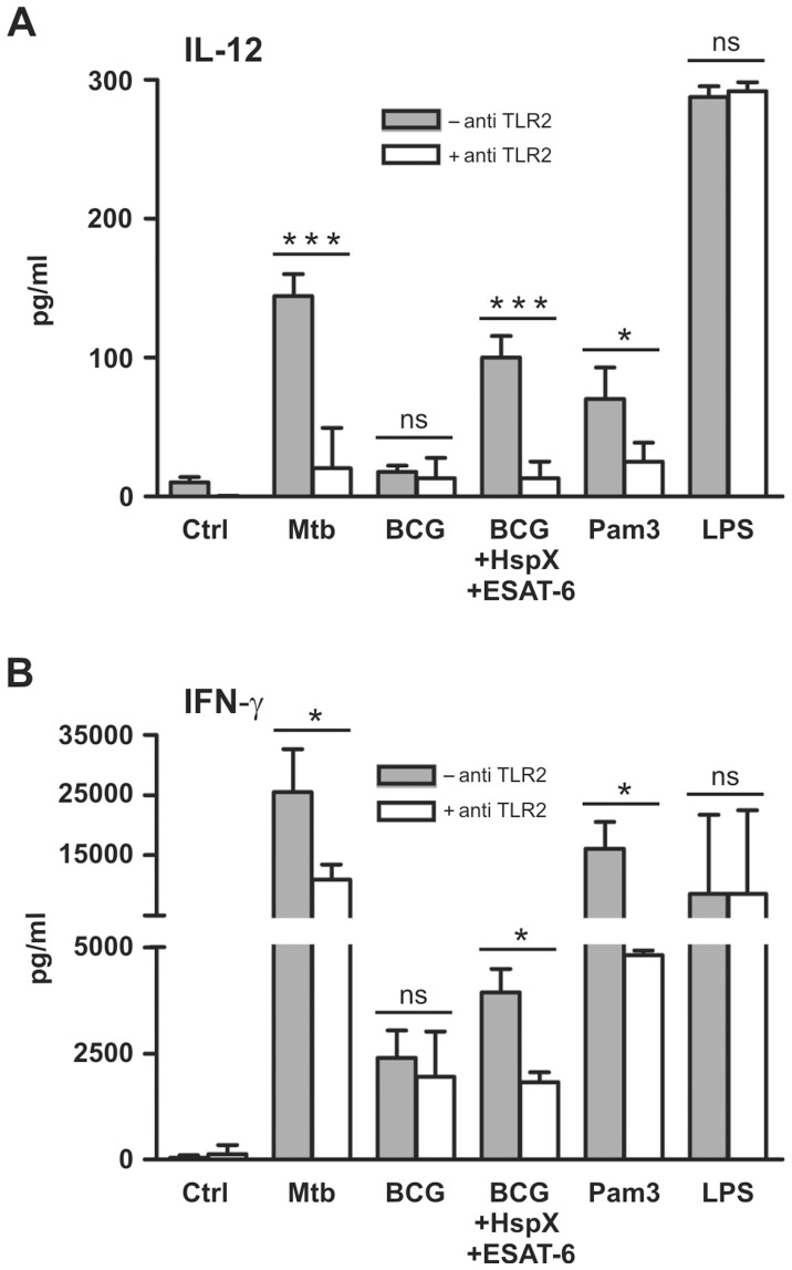 TLR2 is involved in IL-12-dependent IFN-γ secretion by CD4 + cells co-cultured with ESAT-6, HspX and BCG-treated DCs. DCs cultured in the absence (filled bars) or presence (open bars) of 5 µg/ml TLR2-blocking antibody were treated for 24 hrs with Mtb, BCG alone or combined with HspX and ESAT6, 10 µg/ml Pam3CSK4 (Pam3) or 100 ng/ml <t>LPS.</t> (A) Supernatants were collected and IL-12 release was analyzed by ELISA. Results are the mean value+SD of four experiments. Statistical analysis: antibody-treated vs antibody-untreated cells, ns P > 0.05, *P