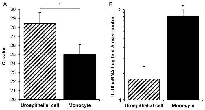 IL-10 mRNA responses to UPEC in dual co-cultures that contain membrane inserts are principally monocyte-derived. (A) Monocytes in dual co-cultures overall have > 10-fold abundance of IL-10 transcript compared to uroepithelial cells, as transcripts emerge 3.4 cycles (Ct = 25.0 vs Ct = 28.4) earlier in qPCR (monocyte vs uroepithelial cell Ct values, p = 0.007). (B) Monocytes from all insert-containing infected conditions showed a statistically significant increase in IL-10 mRNA (1.8-fold increase of averaged infected monocyte conditions over control non-infected monocytes; insert-containing infected monocytes from dual co-cultures vs uninfected control, * p = 0.009). Uroepithelial cells from insert-containing infected conditions did not show significant increases over non-infected (1.16-fold increase of averaged infected uroepithelial cell conditions over control non-infected uroepithelial cells). Mann–Whitney U-tests were used for comparisons and SEM bars are shown.