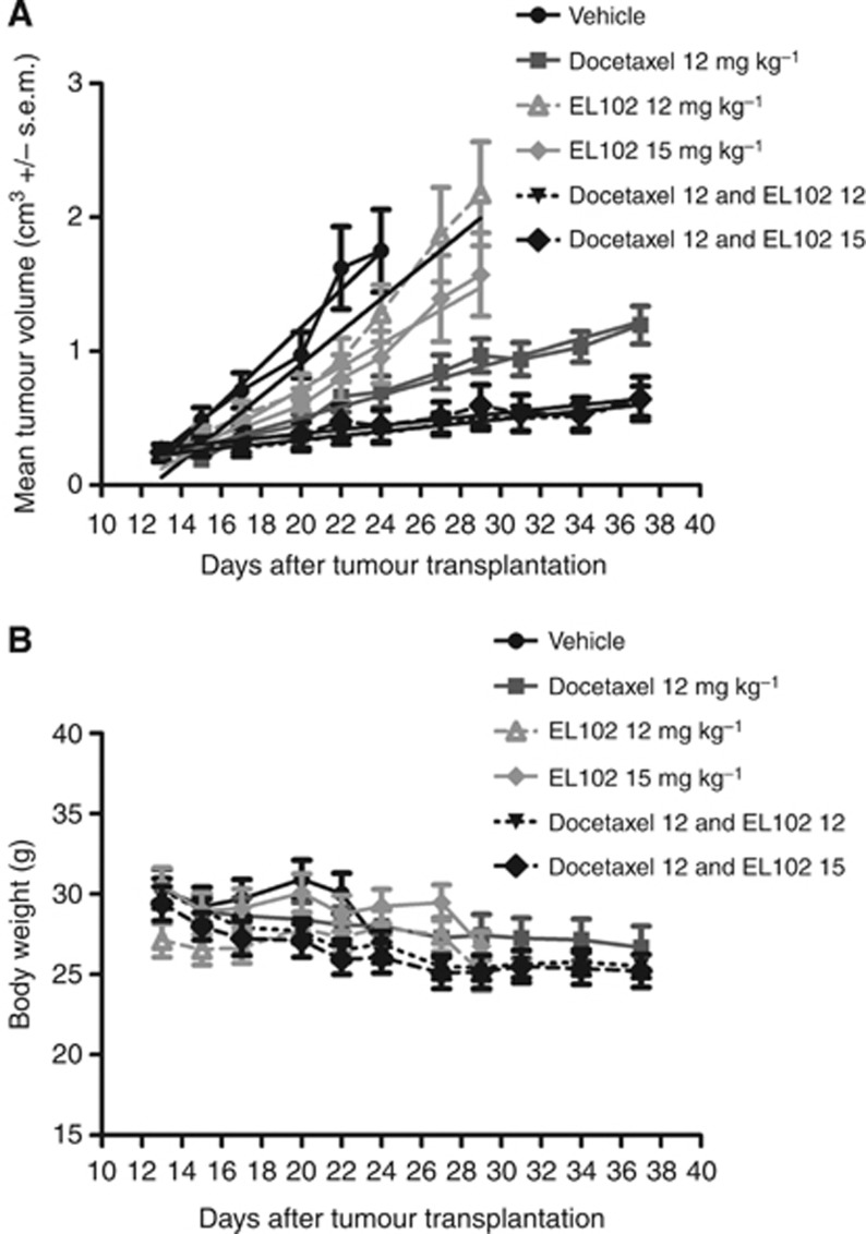 Impact of EL102 and docetaxel alone and in combination on CWR22 xenograft tumour volume. ( A ) Effect of vehicle vs 12 mg kg −1 docetaxel, vs 12 mg kg −1 EL102, vs 15 mg kg −1 EL102, vs 12 mg kg −1 docetaxel plus 12 mg kg −1 EL102, vs 12 mg kg −1 docetaxel plus 15 mg kg −1 EL102, on CWR22 tumour volume using a 5-day on/2-day off schedule (tumour volume (cm 3 )± s.e.m.). (See Supplementary Table 1 for one-way ANOVA comparing tumour volume at each time point). ( B ) Effect of vehicle vs 12 mg kg −1 docetaxel, vs 12 mg kg −1 EL102, vs 15 mg kg −1 EL102, vs 12 mg kg −1 docetaxel plus 12 mg kg −1 EL102, vs 12 mg kg −1 docetaxel plus 15 mg kg −1 EL102, on mouse body weight (Note: vehicle group killed on day 24 due to tumour size). (See Supplementary Table 2 for one-way ANOVA comparing body weight at each time point.)