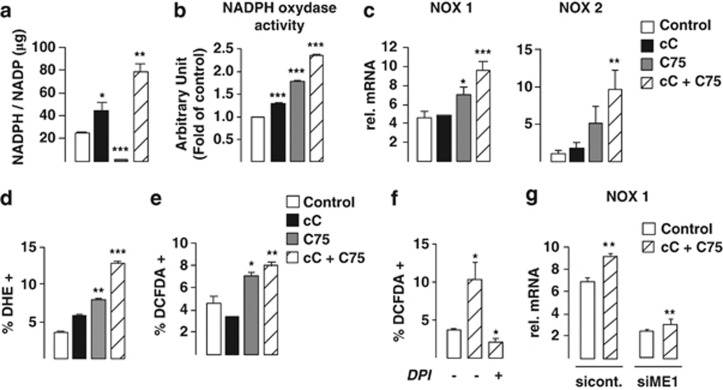 Combined AMPK and FASN inhibition in PC cells is associated with an increased NOX activity and associated ROS production. ( a ) NADPH on NADP cellular ratio was measured in LNCaP cells by colorimetric assay at 48 h following indicated treatments. ( b ) NOX activity was measured by chemiluminescence in the presence of NADPH substrate and lucigenin at 24 h following indicated treatments. ( c ) NOX1 and -2 isoforms mRNA levels were analyzed by RT-qPCR at 24 h following indicated treatments. ( d , e ) FACS analysis of cellular ROS production measuring superoxide radicals (O 2 •− ) and H 2 O 2 with DHE ( d ) and DCFDA ( e ) fluoroprobes, respectively. ( f ) Co-treatment of cells with 2 μ M NOX inhibitor DPI abrogated cC+C75-induced ROS increase, as measured with DCFDA fluoroprobe by FACS analysis. ( g ) Rescue from NOX1 mRNA level induction following cC+C75 treatment was measured by RT-qPCR following LNCaP cell transfection with siRNA against ME1, as compared with control.