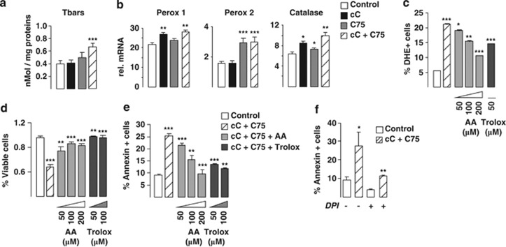 Antiproliferative and proapoptotic effects of AMPK and FASN inhibition in PC cells are mediated by a NOX-dependent ROS overproduction. ( a ) The presence of oxidative stress as a consequence of ROS overproduction following cC+C75 treatment was analyzed by measuring the formation of thiobarbituric acid-reactive substrates (Tbars), indicative of lipid peroxidation, on LNCaP cellular extracts. Values are expressed as m M of malonaldehyde and normalized to protein content. ( b ) The mRNA expression levels of the antioxidant enzymes peroxidase (Perox)-1 and -2 and catalase, as measured by RT-qPCR, were compared following LNCaP treatment, as indicated. ( c – e ) Protective effects of antioxidants on ROS production ( c ), cell proliferation ( d ) and apoptosis ( e ) in cC+C75-treated LNCaP cells was conducted by 2-h pre-treatment with increasing amounts of the antioxidants ascorbic acid (AA) and Trolox, as indicated. ( c ) Rescue of ROS overproduction in cC+C75-treated LNCaP cells was assessed by FACS analysis by measuring H 2 O 2 content with DHE fluoroprobe following treatment with increasing doses of antioxidants. ( d ) Rescue of cC+C75-treated LNCaP cell proliferation was measured by XTT (2,3-bis-(2-methoxy-4-nitro-5-sulfophenyl)-2 H -tetrazolium-5-carboxanilide) assay at 48 h following co-treatment with increasing amounts of antioxidants. ( e ) Rescue of cC+C75-treated LNCaP cells from apoptosis induction was measured by FACS analysis of annexin V-FITC+ cells at 16 h following co-treatment with increasing amounts of antioxidants. ( f ) Rescue of cC+C75-treated LNCaP cells from apoptosis induction by 6-h co-treatment with 2 μ M NOX inhibitor DPI was measured by FACS analysis of annexin V-FITC+ cells.